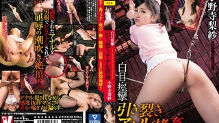 白目痙攣 引き裂きアナル拷姦 小野寺梨紗 VICD-358