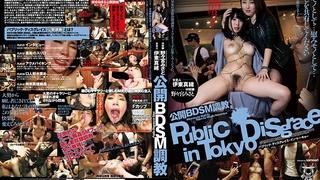 公開BDSM調教 野々宮みさと 伊東真緒 PDD-004